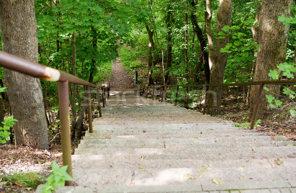 close up of stair at summer forest or park Stock photo © dolgachov