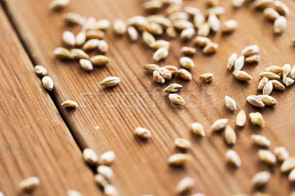 Foto stock: Malta · cereales · agricultura