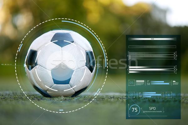 Futballabda futballpálya vonal sportfelszerelés technológia sport Stock fotó © dolgachov