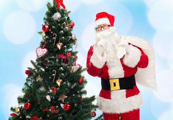 Babbo natale bag albero di natale Natale vacanze persone Foto d'archivio © dolgachov