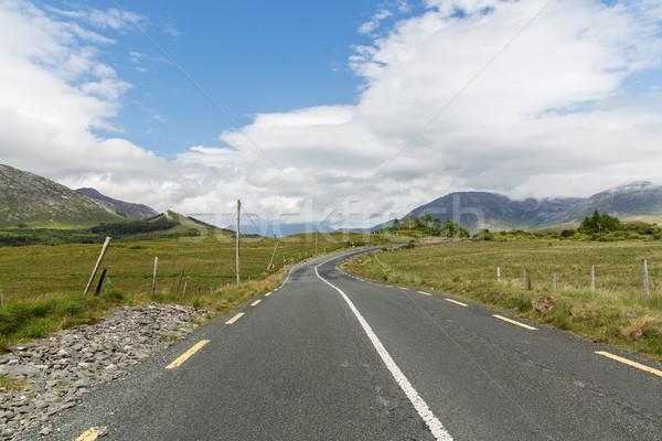 asphalt road at connemara in ireland Stock photo © dolgachov