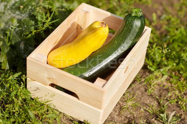 squashes in wooden box at summer garden Stock photo © dolgachov