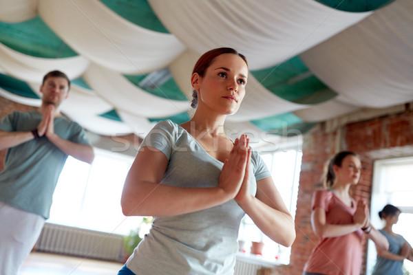 Csoportkép jóga fa póz stúdió fitnessz Stock fotó © dolgachov