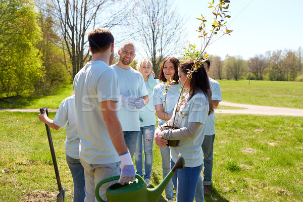 group of volunteers with tree seedlings in park Stock photo © dolgachov