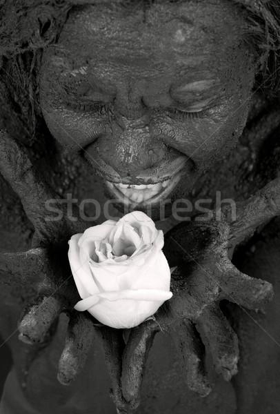 rose Stock photo © dolgachov