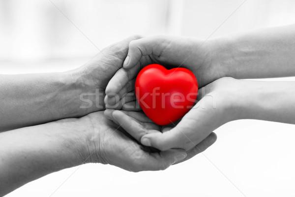 Idős fiatal nő kezek tart piros szív Stock fotó © dolgachov