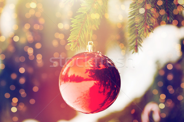 red christmas ball on fir tree branch with snow Stock photo © dolgachov