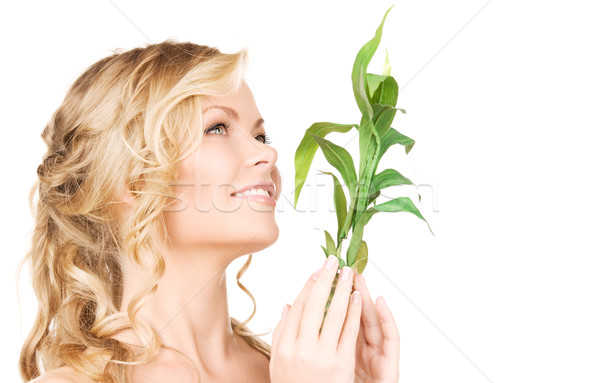 woman with bamboo Stock photo © dolgachov