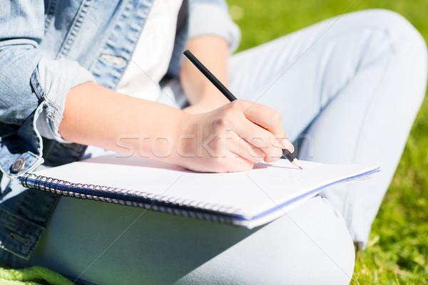 Meisje notebook schrijven park lifestyle Stockfoto © dolgachov