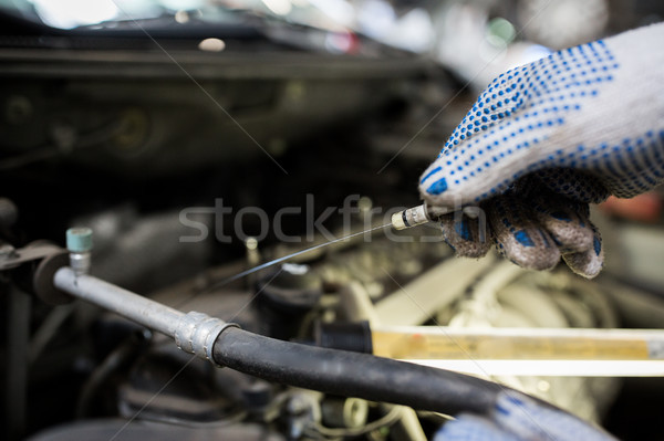 mechanic with dipstick checking motor oil level stock photo