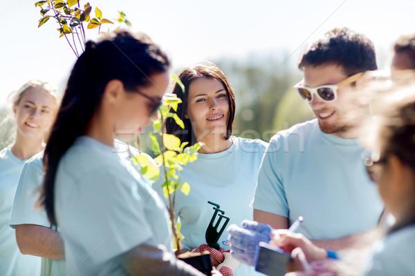 Grupy wolontariusze drzew parku wolontariat Zdjęcia stock © dolgachov