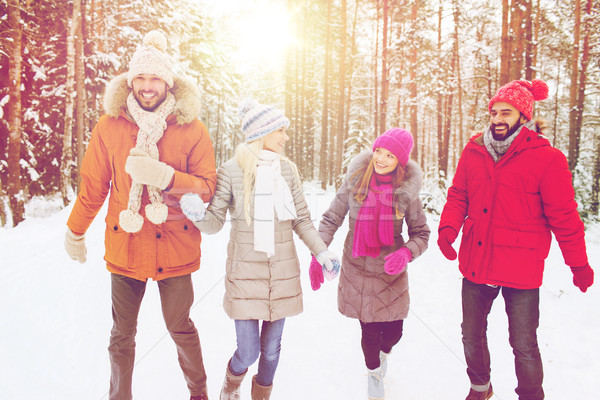 Grupo sorridente homens mulheres inverno floresta Foto stock © dolgachov
