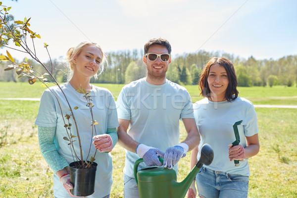 Csoport önkéntesek fa palánták park önkéntesség Stock fotó © dolgachov