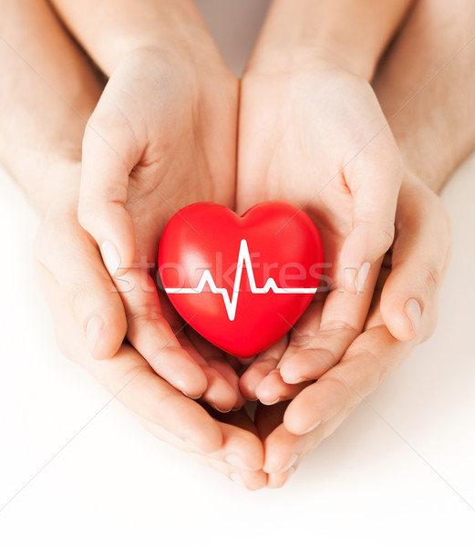hands holding heart with ecg line Stock photo © dolgachov