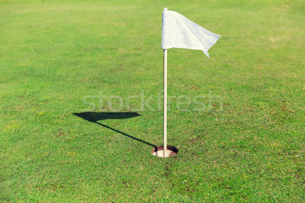 флаг дыра гольф области Сток-фото © dolgachov