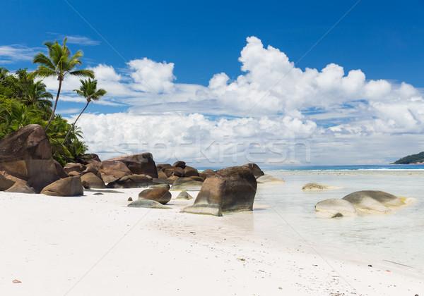 island beach in indian ocean on seychelles Stock photo © dolgachov