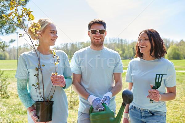 Groep vrijwilligers boom zaailingen park vrijwilligerswerk Stockfoto © dolgachov