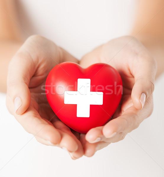 ストックフォト: 女性 · 手 · 赤 · 中心 · 家族 · 健康