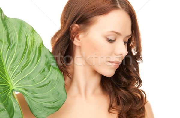 Donna foglia verde foto bianco salute verde Foto d'archivio © dolgachov