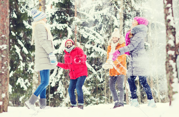 Gruppe glücklich Freunde spielen Wald Liebe Stock foto © dolgachov