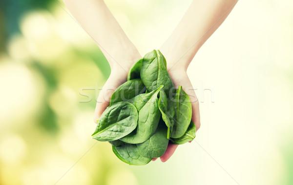 женщину рук шпинат Сток-фото © dolgachov