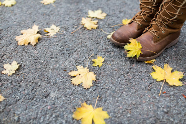 female feet in boots and autumn leaves Stock photo © dolgachov