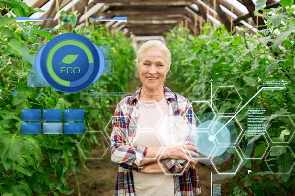 happy senior woman at farm greenhouse Stock photo © dolgachov