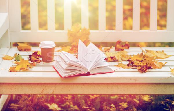 Nyitott könyv kávéscsésze pad ősz park évszak Stock fotó © dolgachov