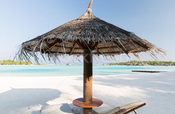 海 モルディブ ビーチ 旅行 観光 休暇 ストックフォト © dolgachov