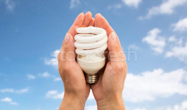 Foto stock: Mãos · energia · lâmpada