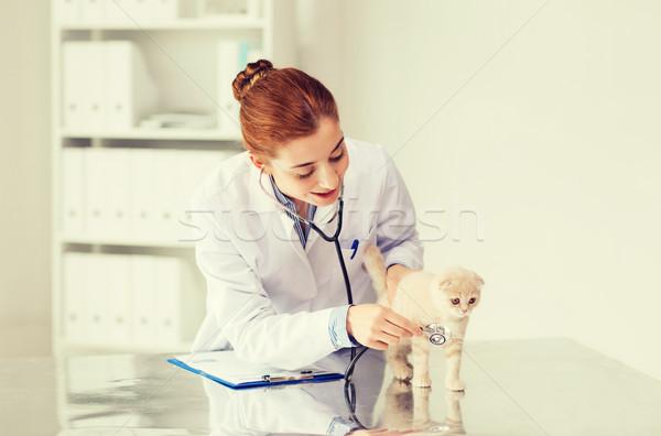 Feliz veterinario gatito veterinario clínica medicina Foto stock © dolgachov