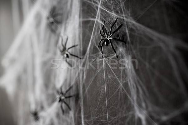 halloween decoration of black toy spiders on web Stock photo © dolgachov