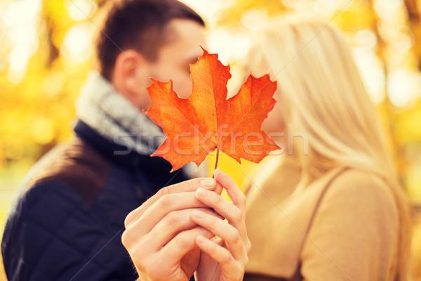 Közelkép pár csók ősz park szeretet Stock fotó © dolgachov