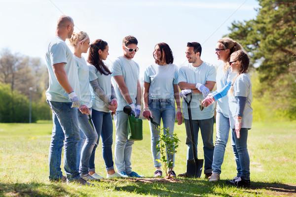 Groep vrijwilligers boom park vrijwilligerswerk Stockfoto © dolgachov