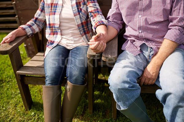 Feliz pareja de ancianos verano granja jardinería Foto stock © dolgachov