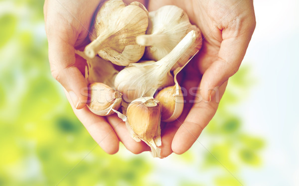 Femminile mani aglio salute alimentare Foto d'archivio © dolgachov