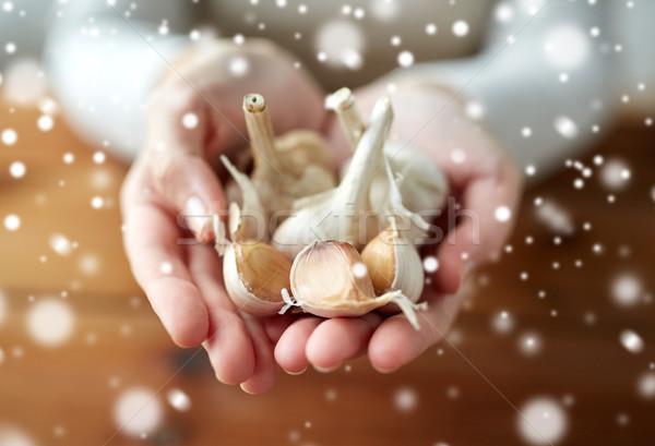 Kobieta ręce czosnku zdrowia ludzi Zdjęcia stock © dolgachov