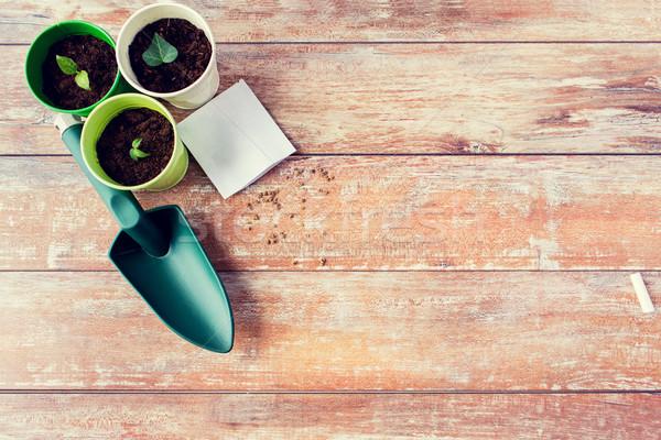 Semis semences jardinage jardin Photo stock © dolgachov