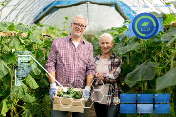 senior couple with box of cucumbers on farm Stock photo © dolgachov