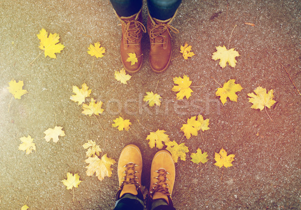 couple of feet in boots and autumn leaves Stock photo © dolgachov