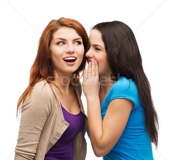 two smiling girls whispering gossip Stock photo © dolgachov