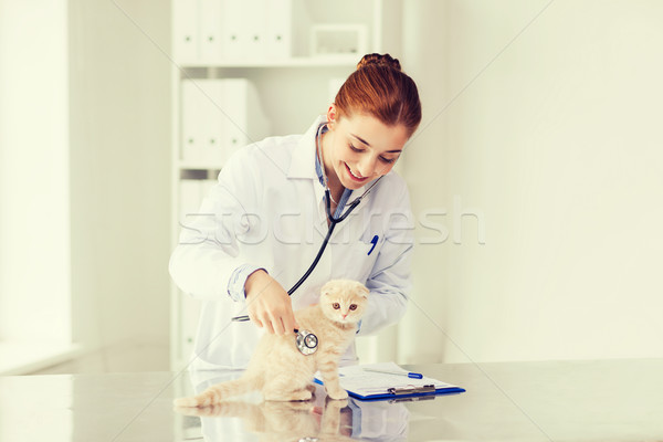 happy veterinarian with kitten at vet clinic Stock photo © dolgachov