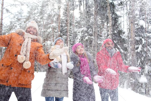 Gruppe lächelnd Männer Frauen Winter Wald Stock foto © dolgachov