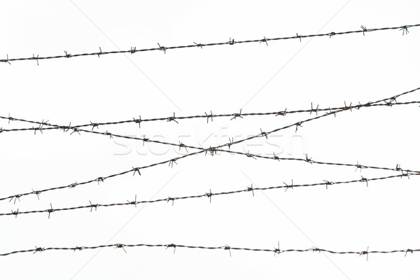 Stock photo: barb wire fence over gray sky