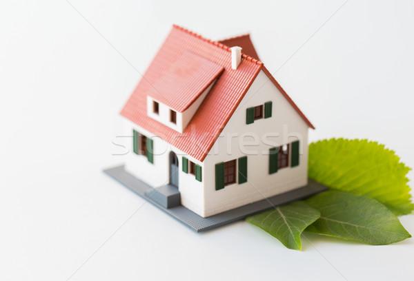 Maison modèle feuilles vertes logement environnement Photo stock © dolgachov