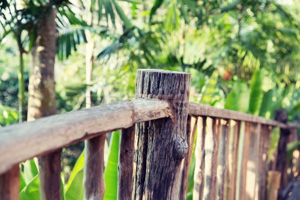 木製 フェンス 熱帯 森 公園 自然 ストックフォト © dolgachov