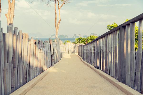 road with fence at seaside Stock photo © dolgachov