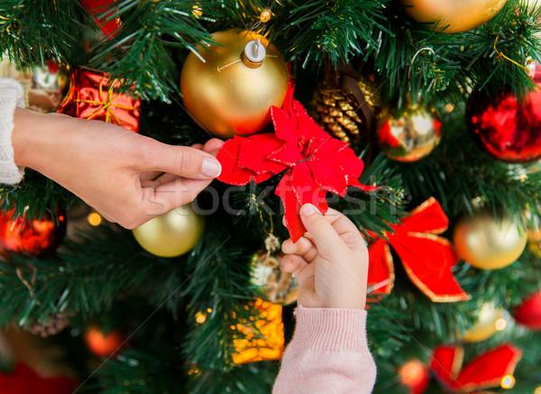 семьи рождественская елка Рождества праздников Новый год Сток-фото © dolgachov