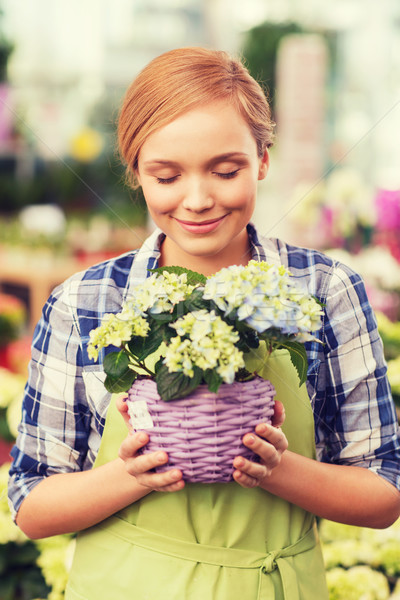 happy woman smelling flowers in greenhouse Stock photo © dolgachov