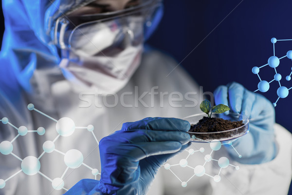 close up of scientist with plant and soil in lab Stock photo © dolgachov